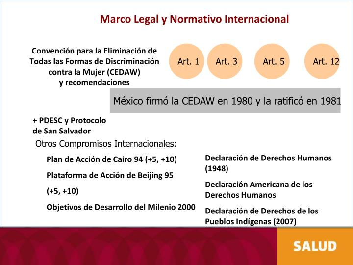 Marco Legal y Normativo Internacional