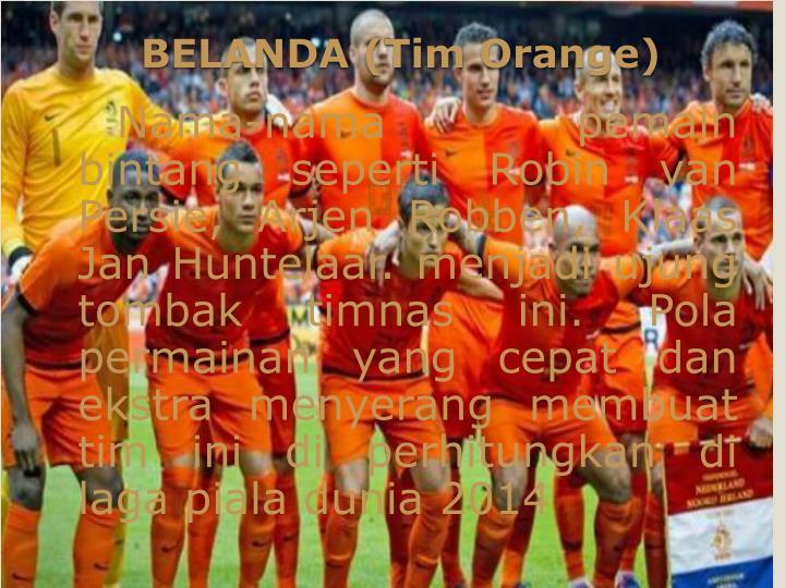 Nama-nama pemain bintang seperti Robin van Persie, Arjen Robben, Klaas Jan Huntelaar. menjadi ujung tombak timnas ini. Pola permainan yang cepat dan ekstra menyerang membuat tim ini di perhitungkan di laga piala dunia 2014