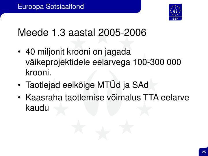 Meede 1.3 aastal 2005-2006