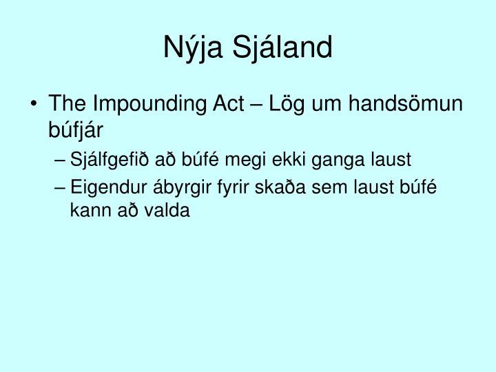 Nýja Sjáland