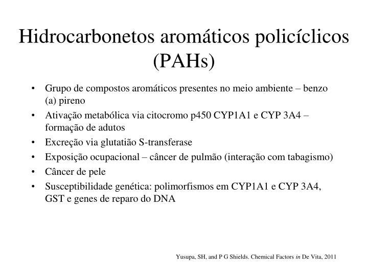 Hidrocarbonetos aromáticos policíclicos (PAHs)