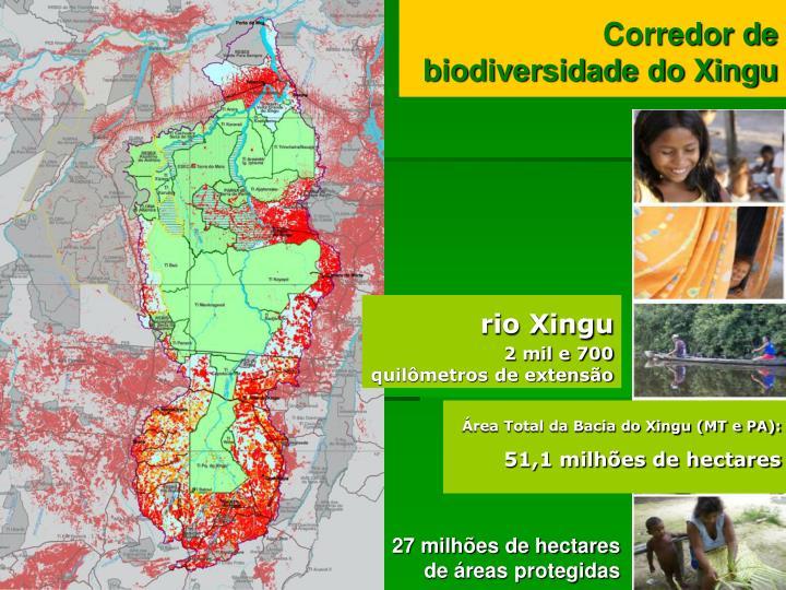 Corredor de biodiversidade do Xingu
