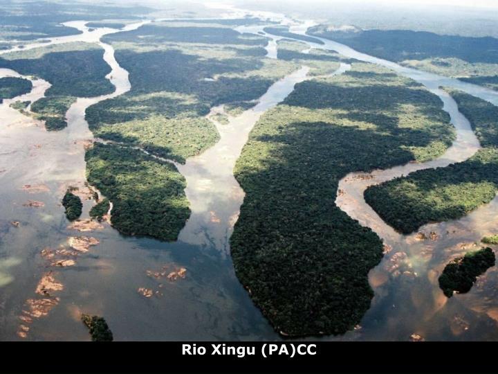 Rio Xingu (PA)