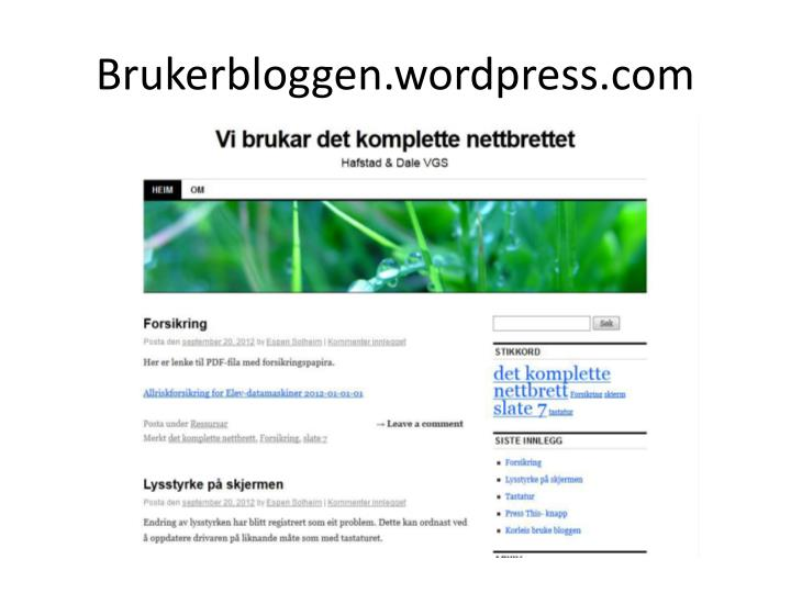 Brukerbloggen.wordpress.com