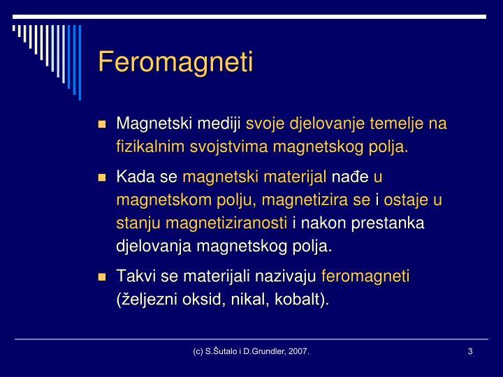 Feromagneti