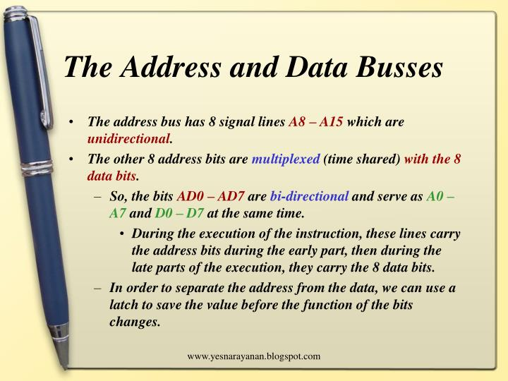 The address and data busses