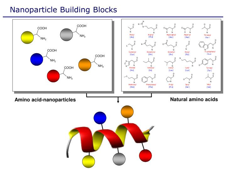 Nanoparticle Building Blocks