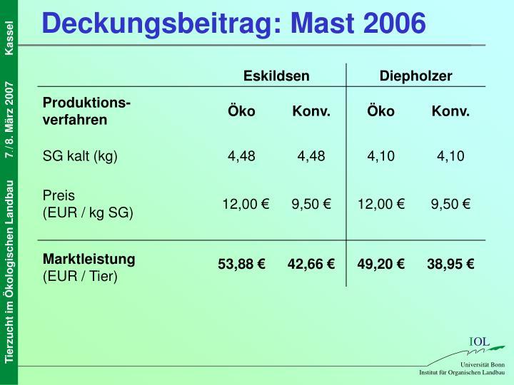 Deckungsbeitrag: Mast 2006