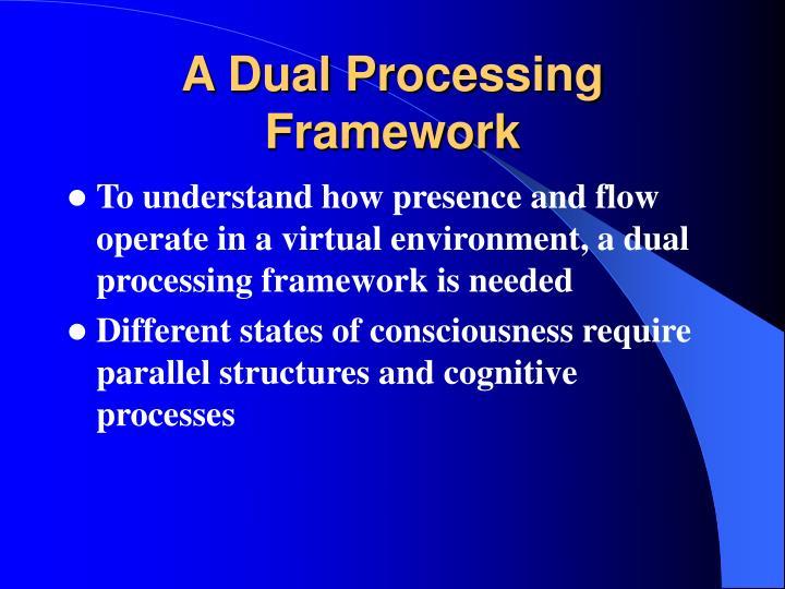 A Dual Processing Framework