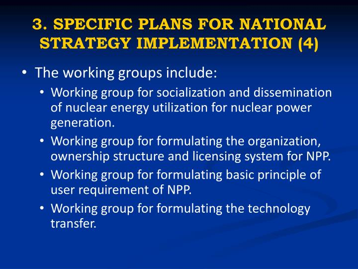 3. SPECIFIC PLANS FOR NATIONAL STRATEGY IMPLEMENTATION (4)