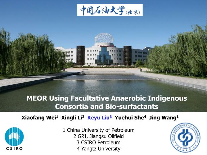MEOR Using Facultative Anaerobic Indigenous Consortia and Bio-surfactants