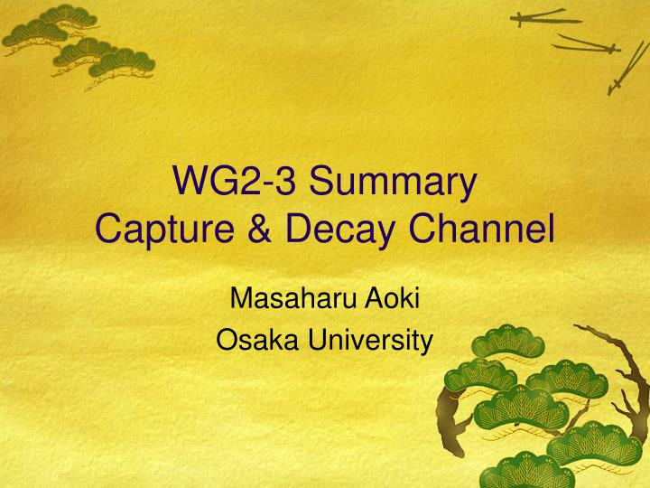Wg2 3 summary capture decay channel
