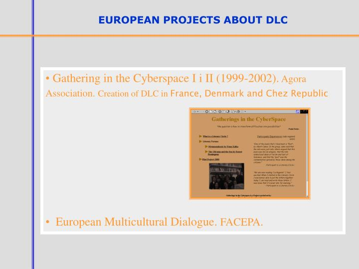 EUROPEAN PROJECTS ABOUT DLC