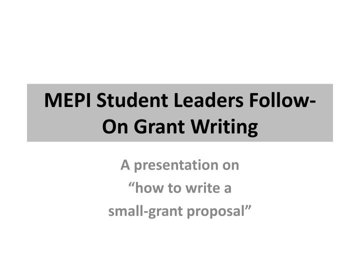 MEPI Student Leaders Follow-On Grant Writing