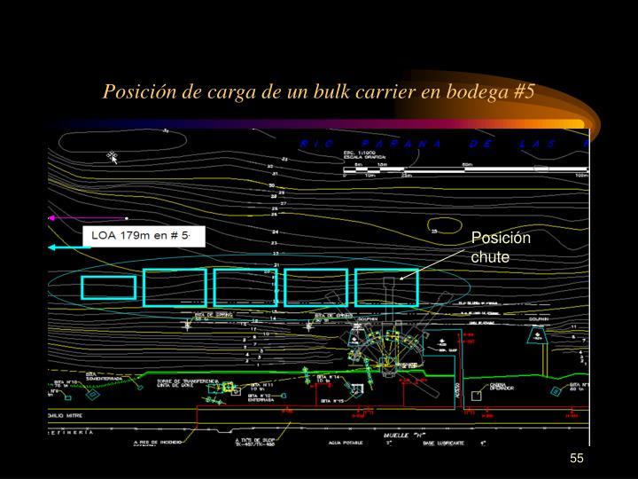 Posición de carga de un bulk carrier en bodega #5