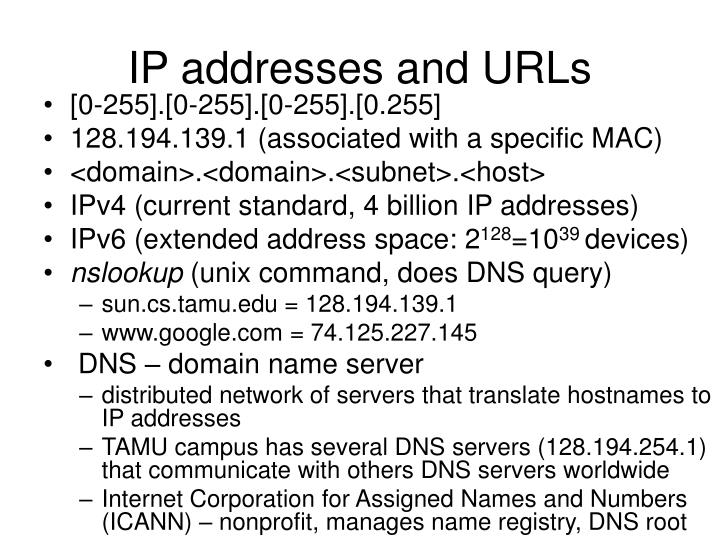 IP addresses and URLs