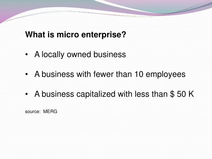 What is micro enterprise?