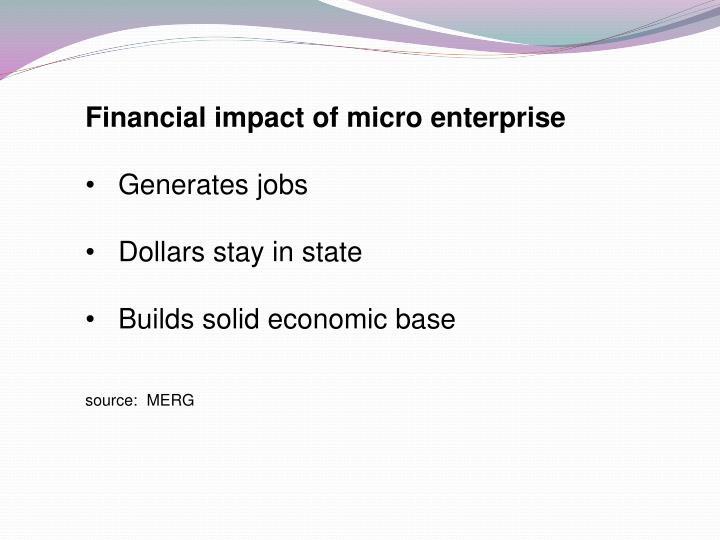 Financial impact of micro enterprise