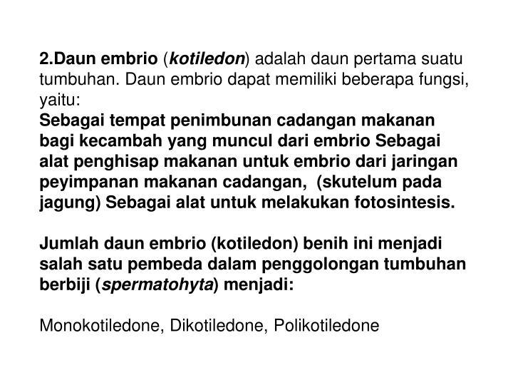 2.Daun embrio