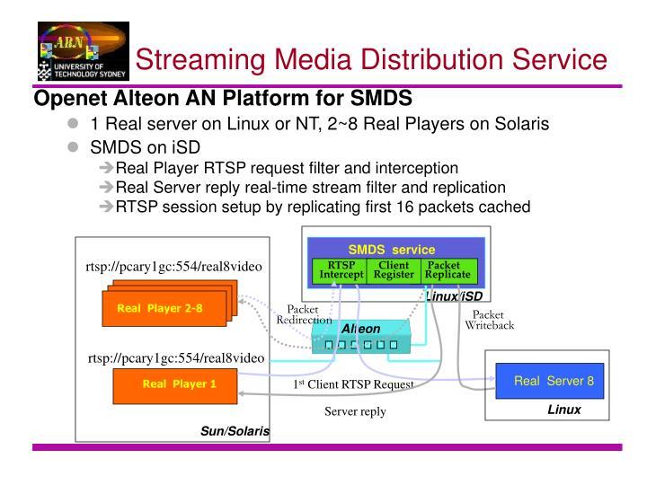 SMDS  service