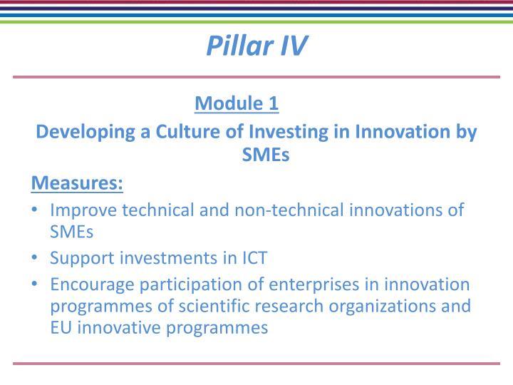 Pillar IV