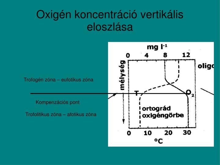 Oxigén koncentráció vertikális eloszlása