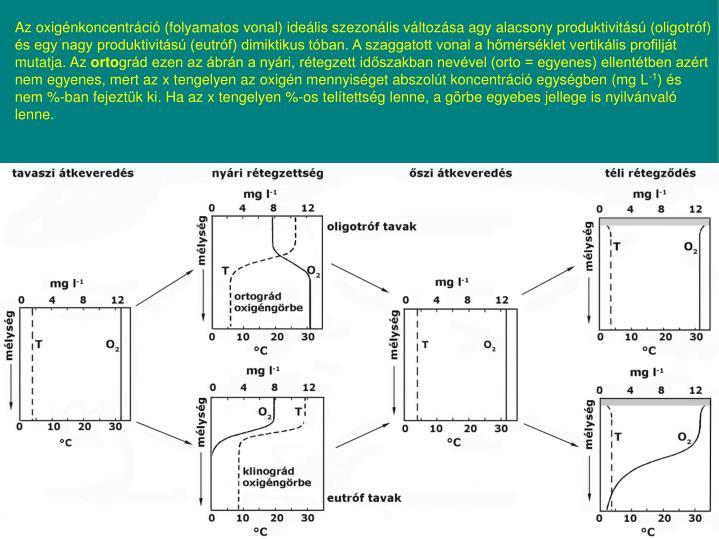 Az oxigénkoncentráció (folyamatos vonal) ideális szezonális változása agy alacsony produktivitású (oligotróf) és egy nagy produktivitású (eutróf) dimiktikus tóban. A szaggatott vonal a hőmérséklet vertikális profilját mutatja. Az