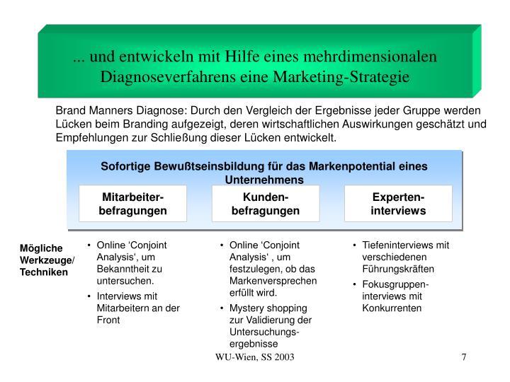 ... und entwickeln mit Hilfe eines mehrdimensionalen Diagnoseverfahrens eine Marketing-Strategie