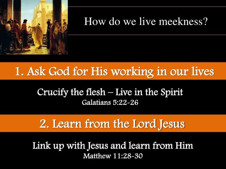 How do we live meekness?