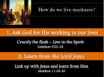 how do we live meekness3
