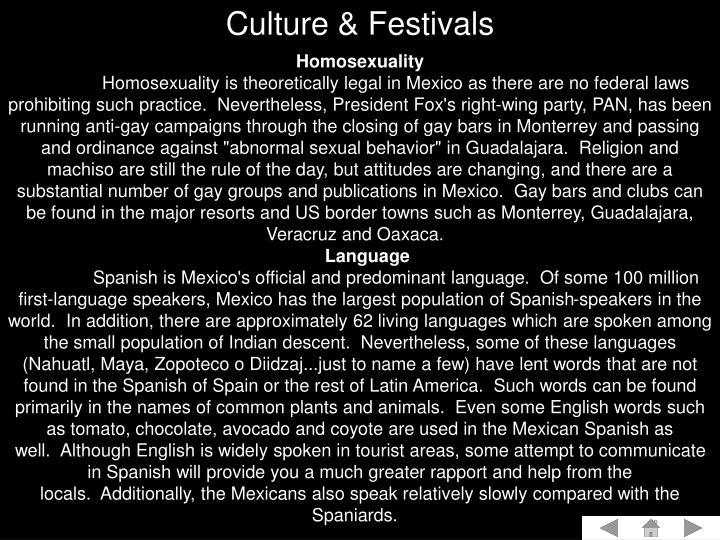 Culture & Festivals
