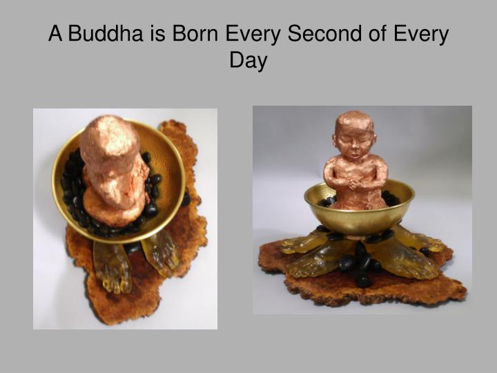 A Buddha is Born Every Second of Every Day