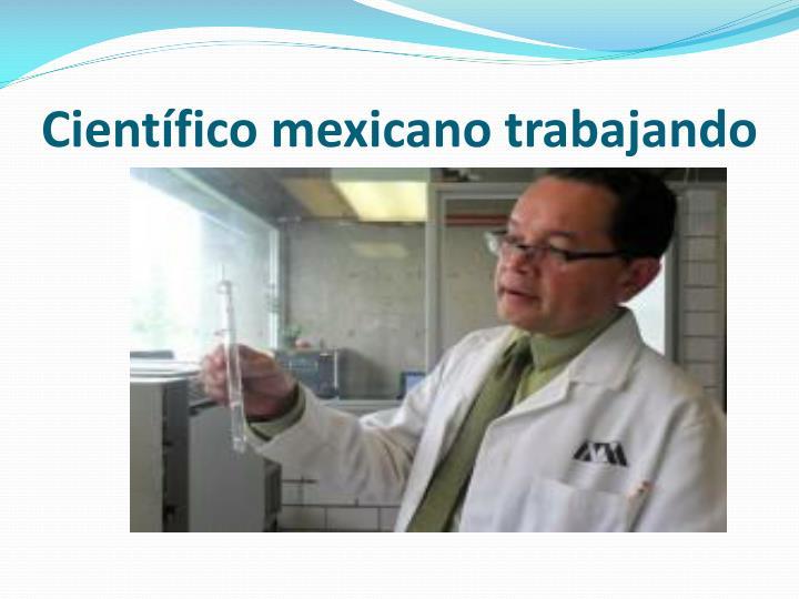 Científico mexicano trabajando