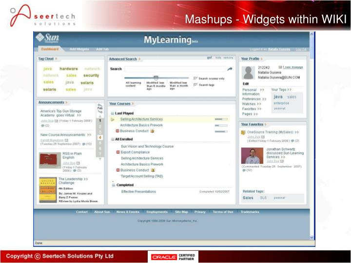 Mashups - Widgets within WIKI