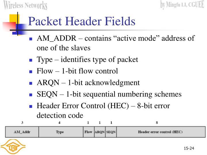 Packet Header Fields