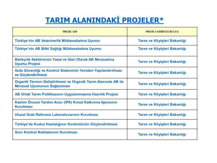 TARIM ALANINDAKİ PROJELER*
