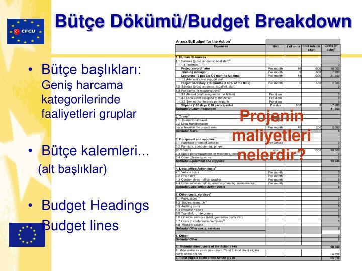Bütçe Dökümü