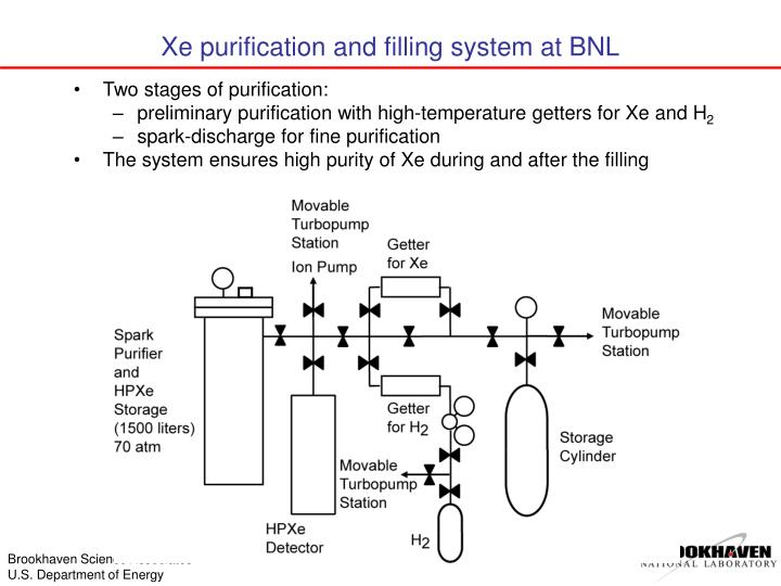 Xe purification and filling system at BNL