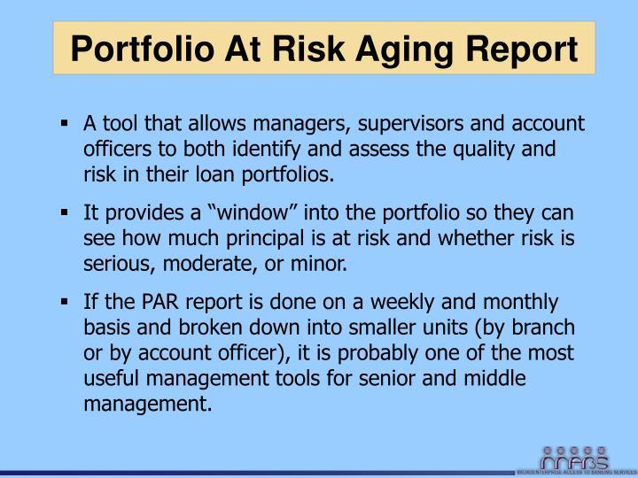 Portfolio At Risk Aging Report
