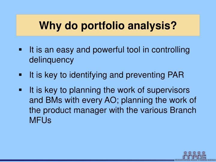 Why do portfolio analysis?