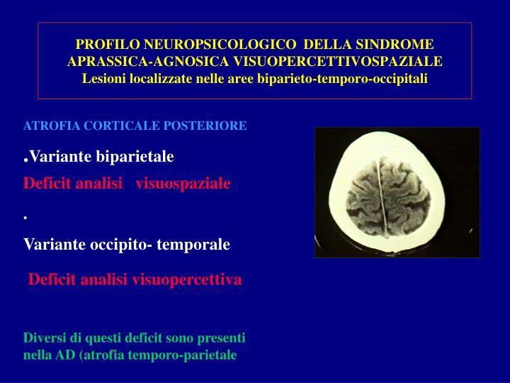 PROFILO NEUROPSICOLOGICO  DELLA SINDROME APRASSICA-AGNOSICA VISUOPERCETTIVOSPAZIALE