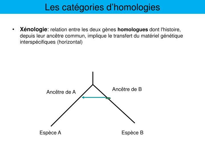 Les catégories d