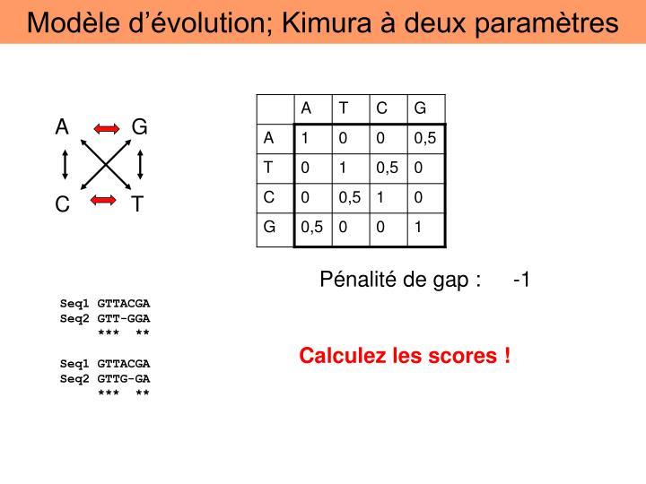 Modèle d'évolution; Kimura à deux paramètres