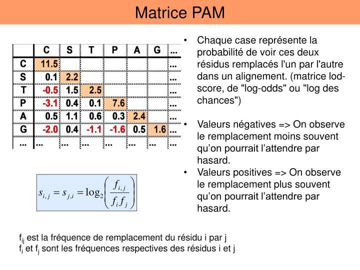 Matrice PAM