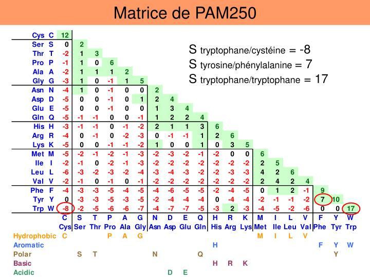 Matrice de PAM250