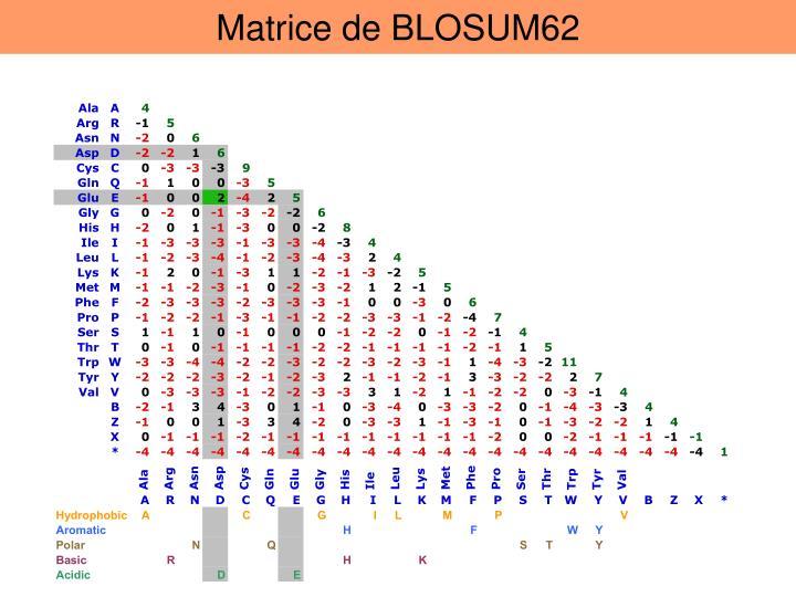 Matrice de BLOSUM62