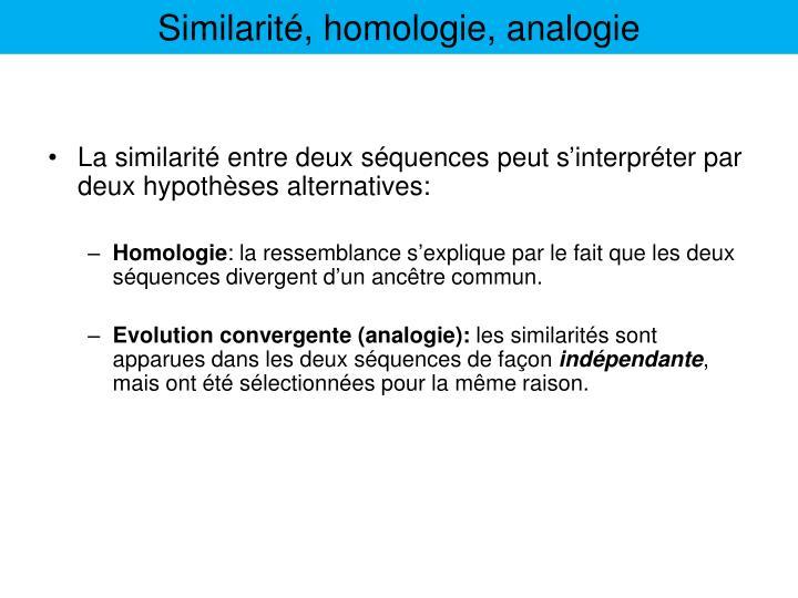 Similarité, homologie, analogie