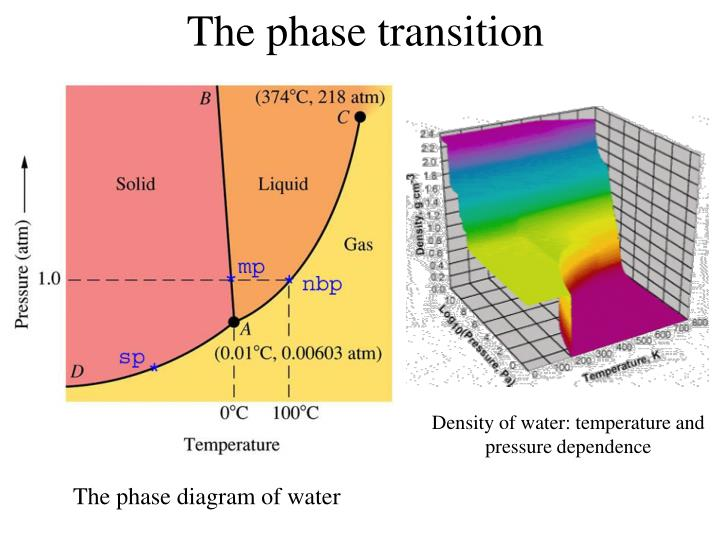 The phase transition