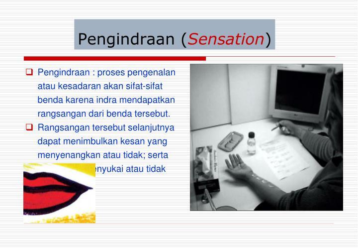 Pengindraan (