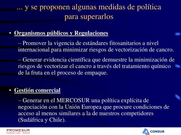 ... y se proponen algunas medidas de política para superarlos